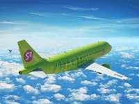 S7 Airlines — flight punctuality leader