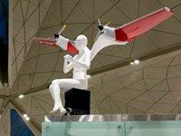 Новый терминал в аэропорту <nobr>Санкт-Петербурга</nobr>