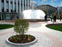 New public garden in Novosibirsk from S7Airlines